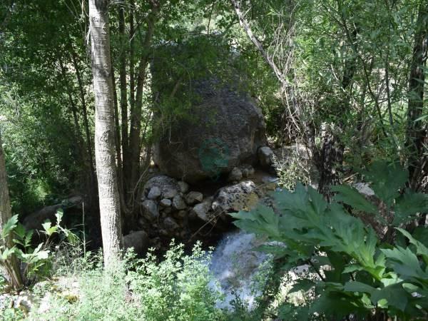 طبیعت روستای لزور فیروزکوه تصاویر